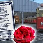 3609 – 1.000 Rosen aus der Straßenbahn